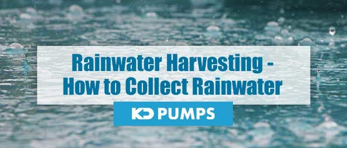 How to Collect Rainwater