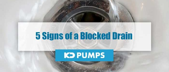 Signs of Blocked Drain